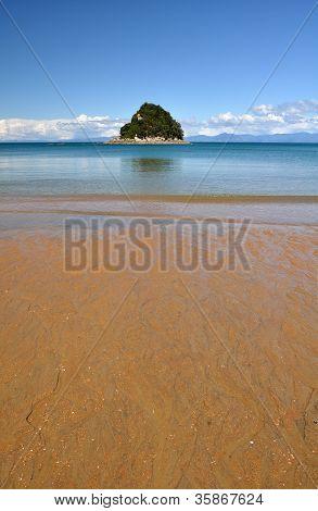 Ngaio Island And Beach, Abel Tasman National Park, New Zealand