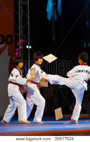 Young Korean Boys Taekwondo Kicking Demonstration