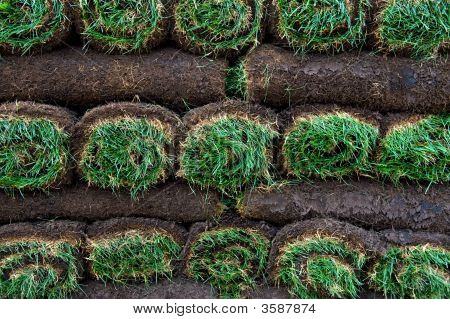 Bright Green Rolls Of Sod