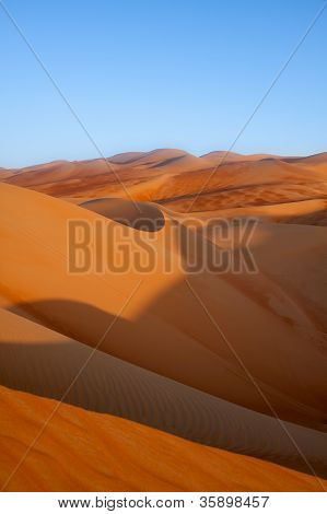 Vivid and Colorful Dunes in the Late Afternoon Sunlight