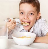 Child eat breakfast. Boy eating cereals with milk