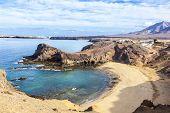 picture of papagayo  - Playa de Papagayo  - JPG
