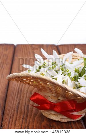Snowdrops in a straw basket on a brown wooden