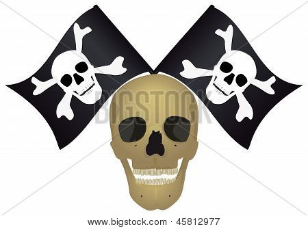 Skull With The Crossed Flags.