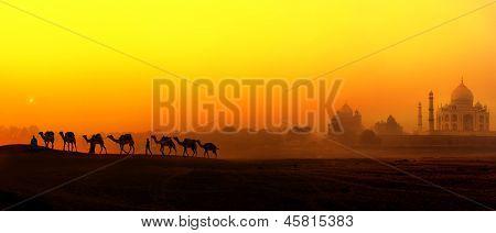 Vista en la India en Taj Mahal puesta del sol. Paisaje panorámico con siluetas de camellos y pala indio Tajmahal