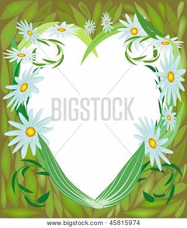 Abstract Flowers, Chamomile, Heart-shaped.