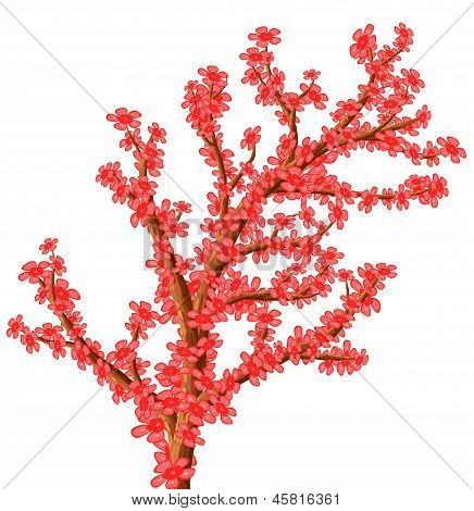 Abstract Flowering Tree.