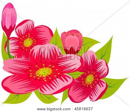 Abstract Pink Flowers.