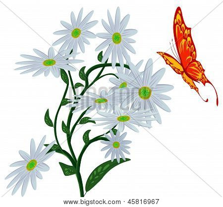 Abstract Butterfly, And Flower.