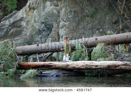 Young Girl Kneeling On Tree Over Water