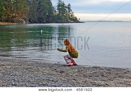 Young Girl Excited About Seagull In Ocean