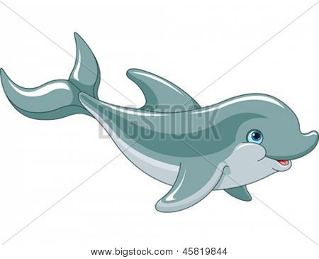 Swimming Dolphin isolated on white background