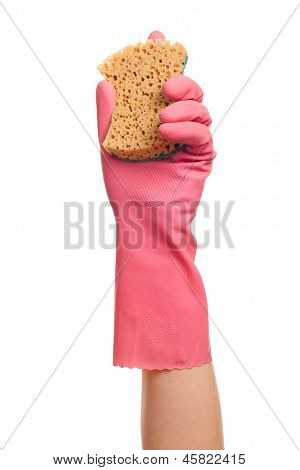 Hand in a pink glove holding domestic sponge