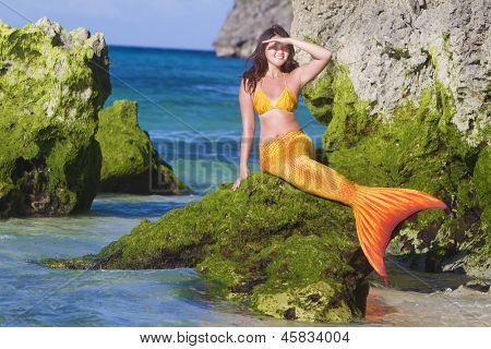 mermaid on tropical sea background