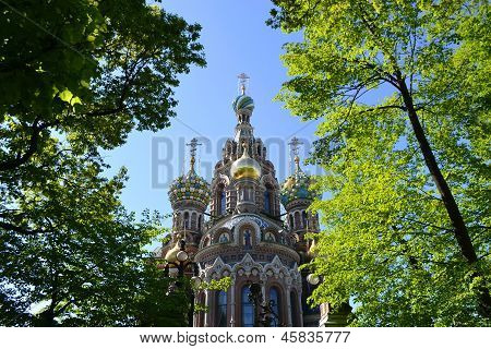 Spas-na-krovi Cathedral Framed With Green Leaves