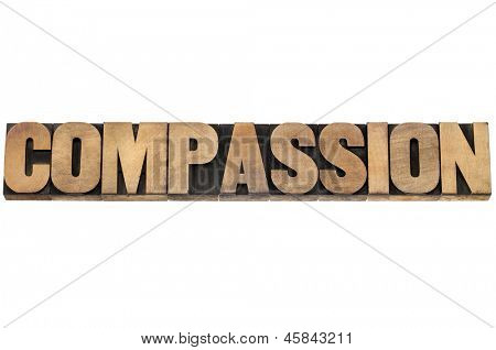 compassion word - isolated text in letterpress wood type printing blocks