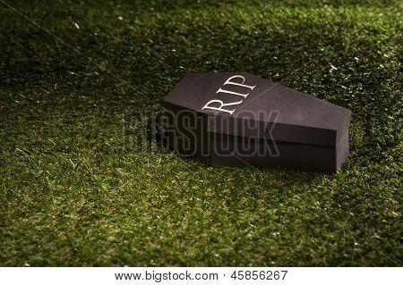 Halloween Coffin On Lawn