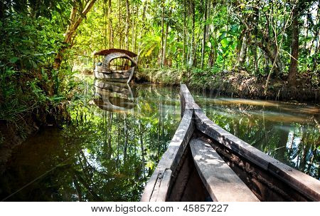 Boat In Backwaters Jungle