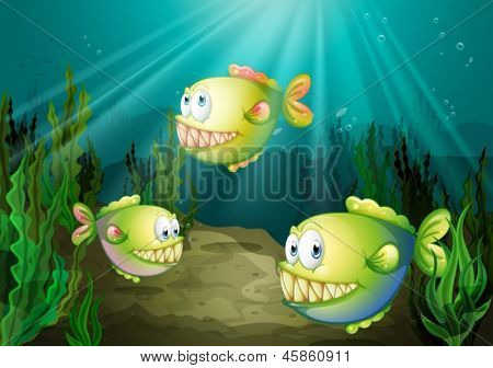 Illustration of the three piranhas under the sea with seaweeds