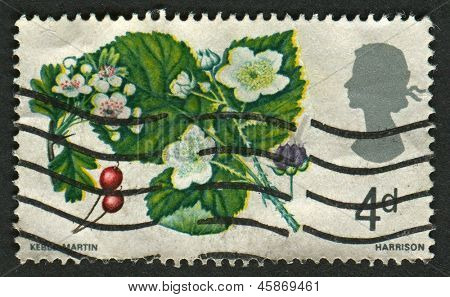 UK - CIRCA 1967: A stamp printed in UK shows image of the Hawthorn and Bramble, British Flora, circa 1967.