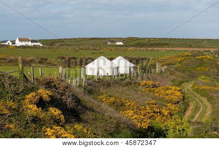Yurt in countryside tent like structure