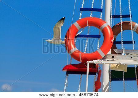 Fishing boat and sea gull in Greece