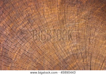 Wood Texture With Focus On The Wood's Grain