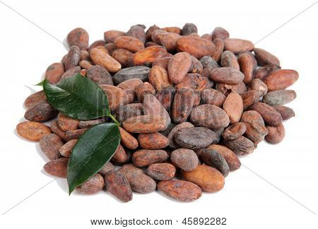 Cocoa beans with leaves isolated on white