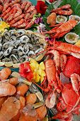 Seafood Buffet Display
