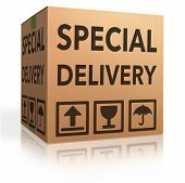 Постер, плакат: Специальный доставки важных отгрузки Специальный пакет отправки экспресс доставки картонную коробку от onli