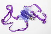 stock photo of clitoris  - Purple butterfly sex toy made of rubber or latex on white - JPG