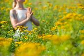 Woman Meditating In Meadow Of Yellow Flowers