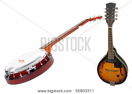 The image of a banjo and a mandolin under the white background
