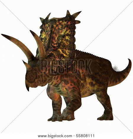 Pentaceratops On White