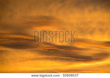 Beautiful Sky Background - Closeup Shot