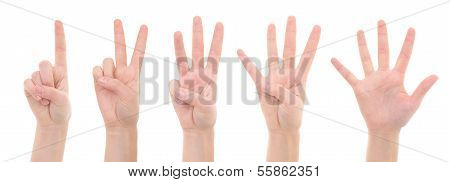 Female Hands Counting From One To Five Isolated On White