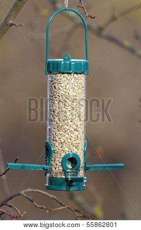 Bird Feeder Full Of Seeds