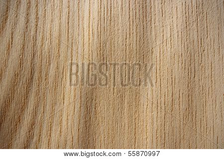 Japanese Elm Wood Surface - Vertical Lines
