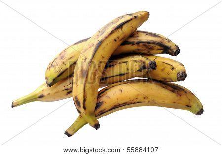 Some Ripe Banana Plantain