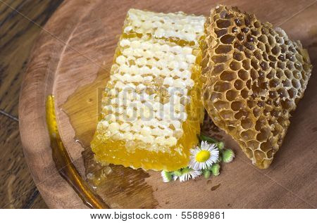 honeycombs on wooden background