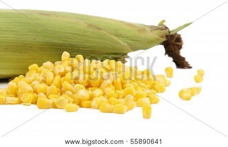 Closed corncob and corn kernels