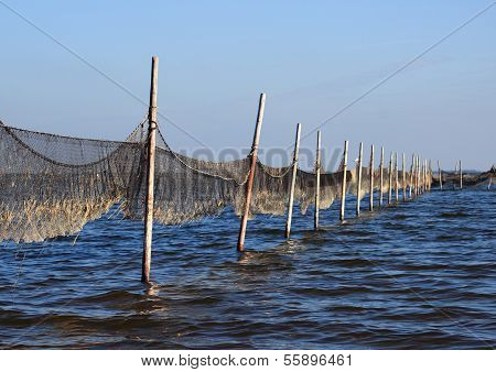 Perspective View Of Fishing Net Mounted To Wooden Poles
