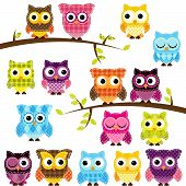 stock photo of baby doll  - Vector Set of Patchwork Or Quilt Style Owls and Branches - JPG