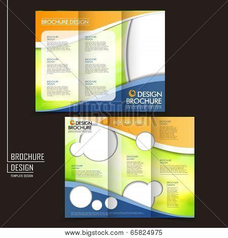 Vector Tri-fold Business Brochure Layout Design Template