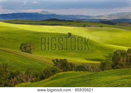 Tuscany Hills and Countryside in SIenna region, Italy