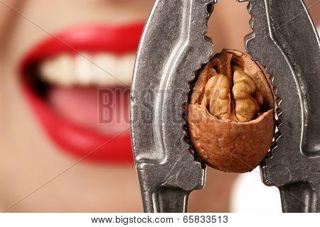 Woman With Nutcracker