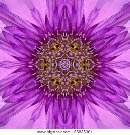Purple Concentric Flower Center Mandala Kaleidoscopic Design