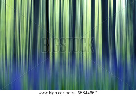 Bluebells Forest Abstraction