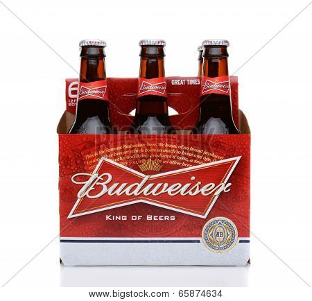 Budweiser Six Pack Side View