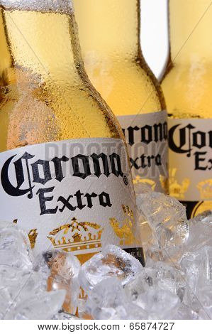 Closeup Of Corona Extra Beer Bottles